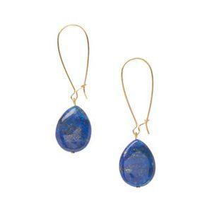 Lapis & 14K Gold Drop Earrings